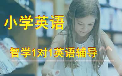 郑州智学小学五年级1对1英语辅导