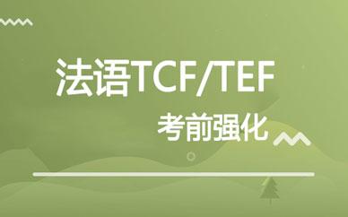 郑州法语TCF/TEF考前强化班