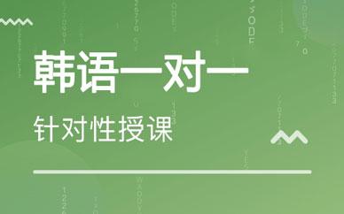 郑州专业韩语一对一_郑州定制韩语学习课程