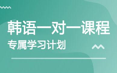 郑州同步一对一韩语课程