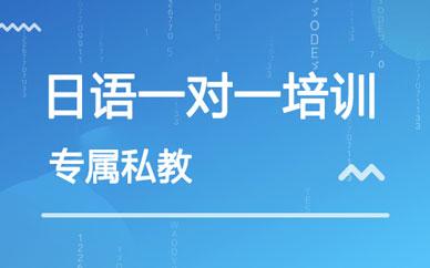 郑州同步日语1v1辅导