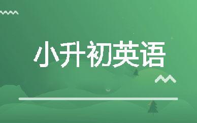郑州睿博小升初英语