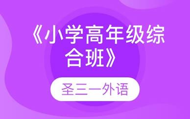郑州《小学高年级综合班》一期培训课程