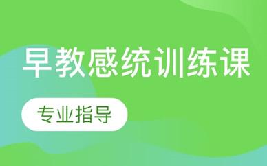郑州早教感统训练培训课程