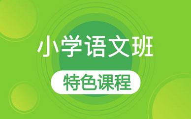 郑州小学语文辅导课