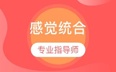 郑州感知系统训练班