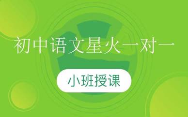 郑州初中语文一对一培训课程