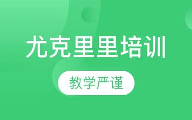 郑州尤克里里金牌课程