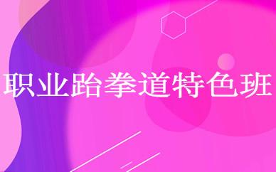 郑州职业跆拳道特色培训班课程