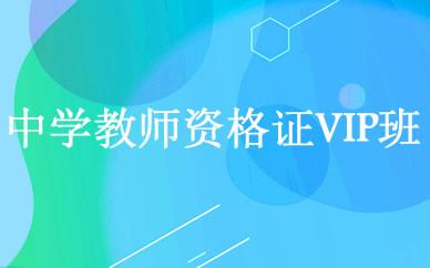 郑州中学教师资格证vip培训课程