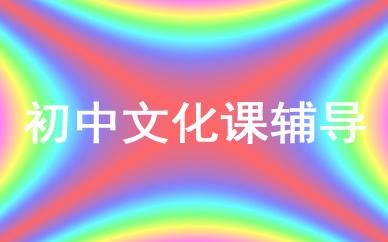 郑州初中文化课辅导课程
