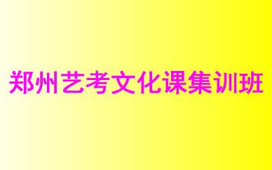 郑州艺考文化课集训班课程