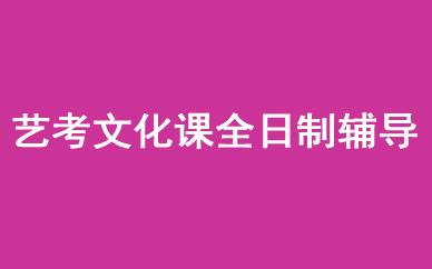 郑州艺考文化课全日制辅导课程