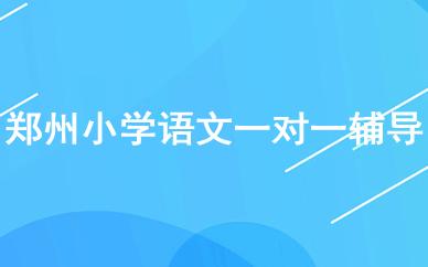 郑州小学语文一对一辅导课程