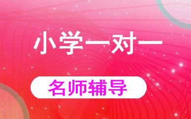 郑州小学一对一辅导课程