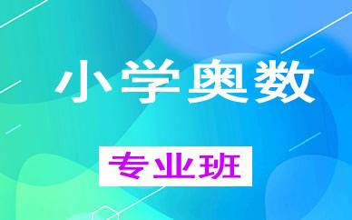 郑州小学奥数一对一辅导课程