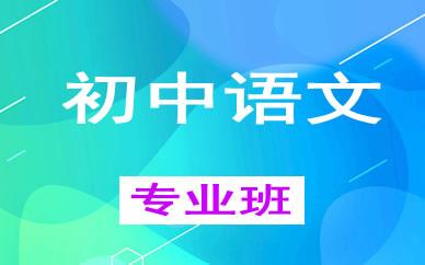 郑州初中语文1对1辅导课程