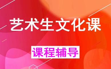 郑州高考艺术生文化课辅导课程