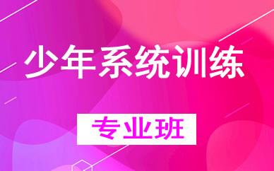郑州少年系统训练辅导课程