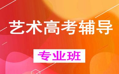 郑州艺术高考辅导培训课程