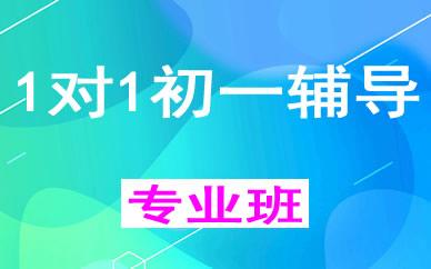 郑州1对1初一辅导课程_郑州初中个性化辅导