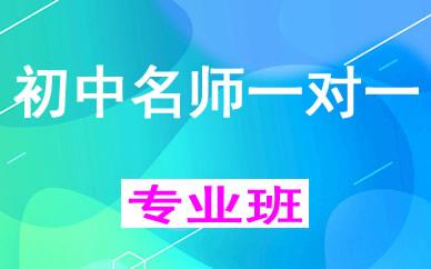郑州初中名师一对一辅导课程