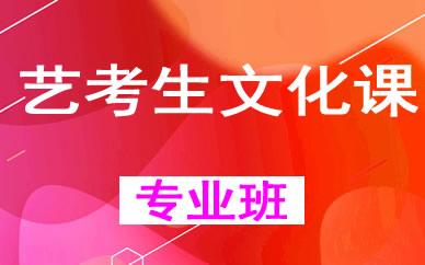 郑州高考艺考生文化课辅导课程