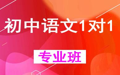 郑州初中语文1对1提升辅导课程