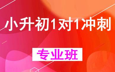 郑州小升初1对1冲刺辅导班课程