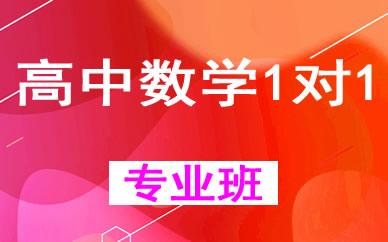 郑州高中数学1对1培优辅导课程