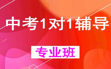 郑州中考1对1辅导课程