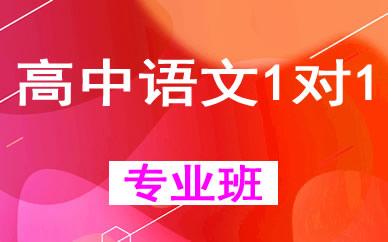 郑州高中语文1对1培优辅导课程