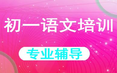 郑州初一语文培训课程