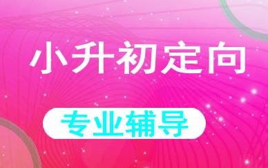 郑州小升初定向辅导课程