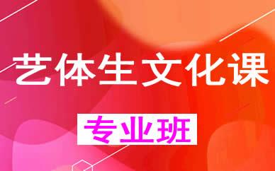 郑州艺体生文化课培训课程