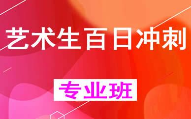 郑州艺术生百日冲刺集训班辅导