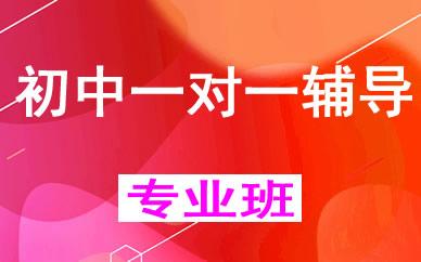 郑州初中全科一对一个性化辅导课程