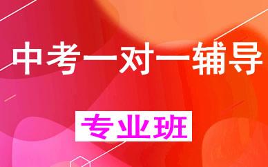 郑州中考一对一辅导课程