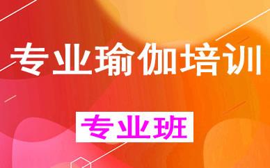 郑州专业瑜伽培训课程_郑州空中瑜伽辅导