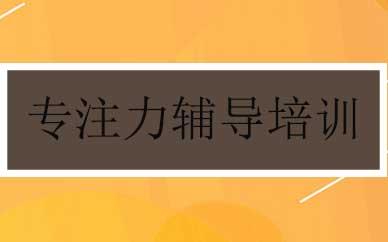 郑州专注力辅导培训课程