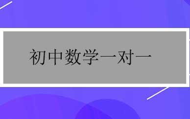 郑州初中数学一对一精讲辅导课程