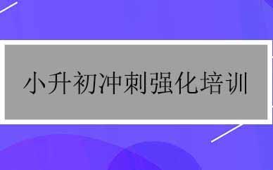 郑州小升初冲刺强化培训课程_郑州小升初一对一培训