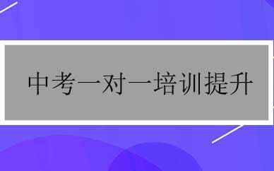 郑州中考一对一培训提升课程