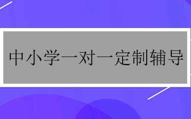 郑州中小学一对一定制辅导课程