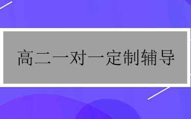 郑州高二一对一定制辅导课程
