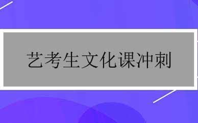 郑州艺考生文化课冲刺辅导课程