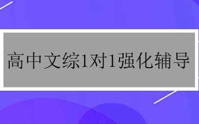 郑州高中文综1对1强化辅导课程