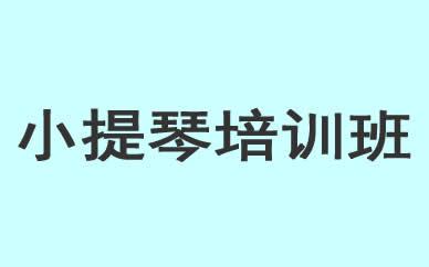 郑州小提琴技能培训课程