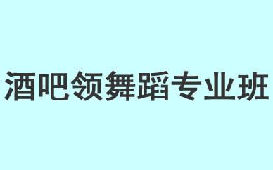 郑州酒吧领舞蹈专业培训班