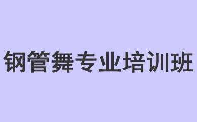 郑州钢管舞舞蹈专业培训班